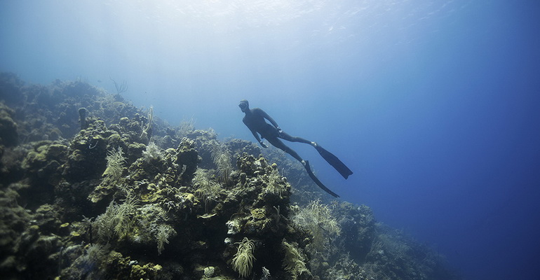 Freediving Boracay Activity