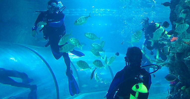 Boracay Aquarium Scuba